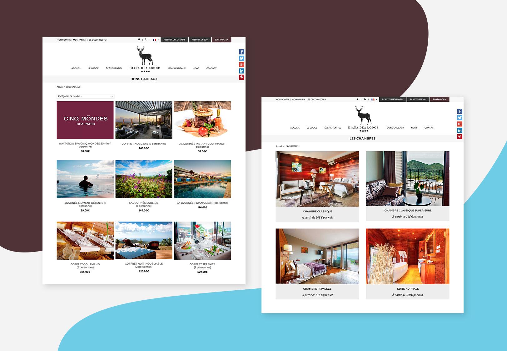 mockup-de-site-web-design-et-responsive-pour-Diana-Dea-Lodge